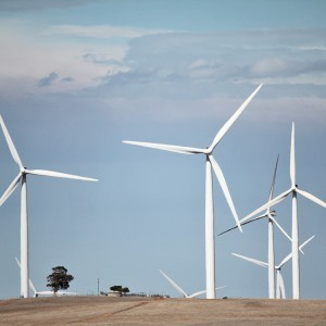 Renewable Energy - Wind Farm
